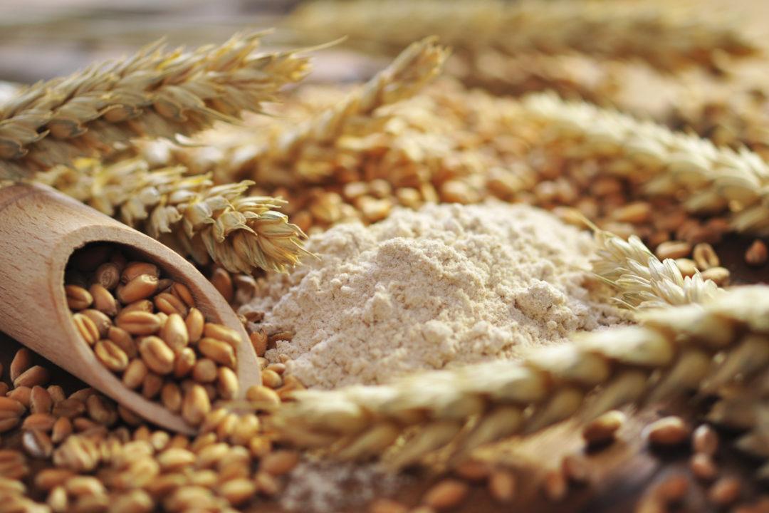 whole-wheat-flour_AdobeStock_35274452_E.jpg