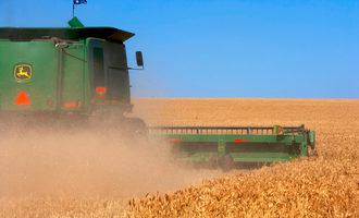 Brazil gmo wheat