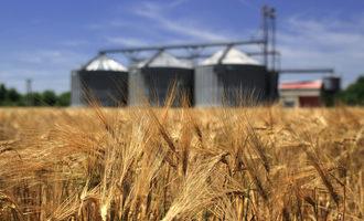 Wheat field with silos adobestock 54246480 e
