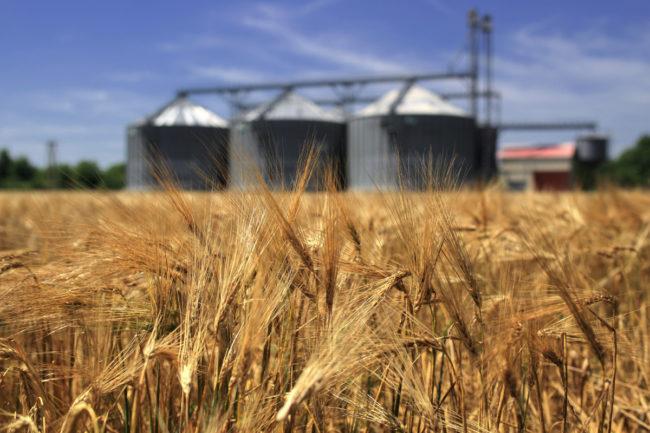 Wheat-field-with-silos_AdobeStock_54246480_E.jpg