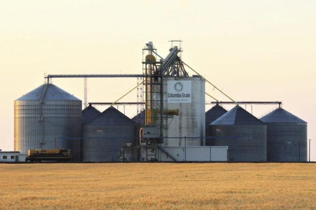 Columbia-Grain.jpg