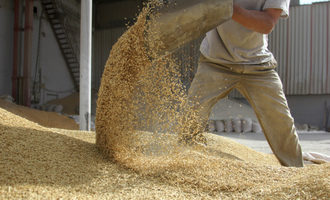 Grain-moving_adobestock_26233990_e