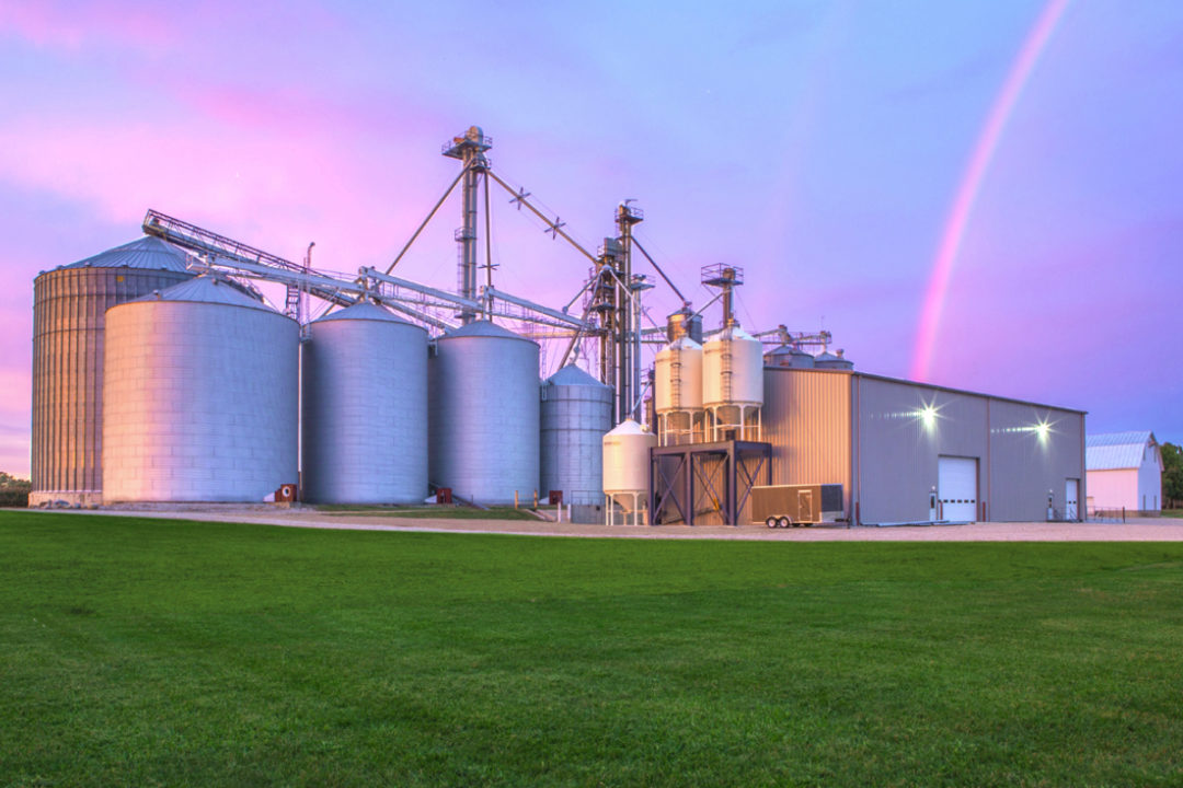 Rogers Grain