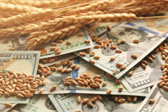 grain money