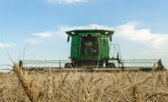 Dry-wheat-harvest_photo-cred-adobe-stock