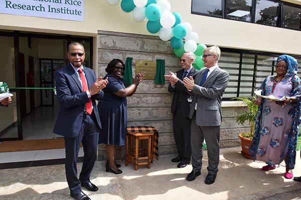 IRRI office in Nairobi