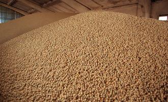 Soybean-storage_photo-cred-adobestock