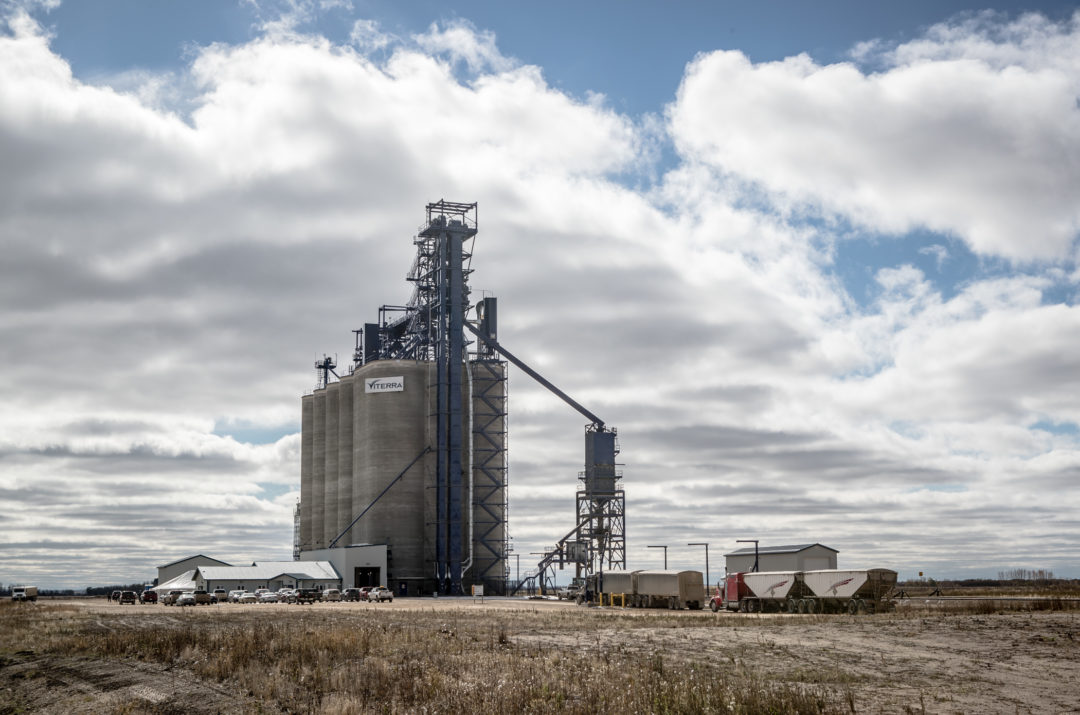 Viterra's Wadena grain terminal