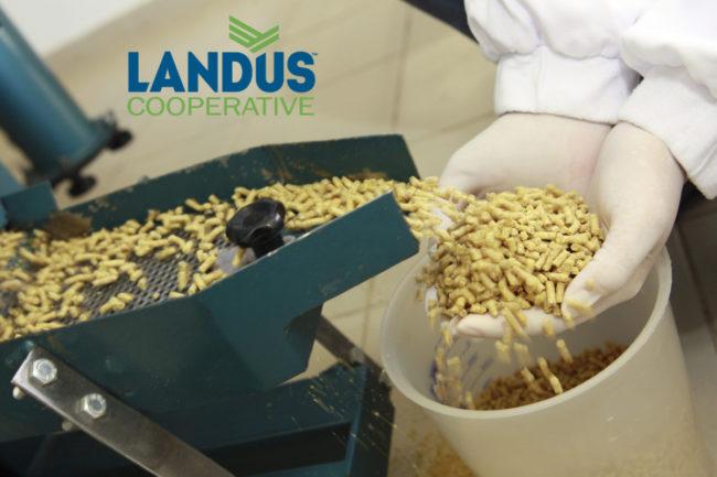 Landus Cooperative