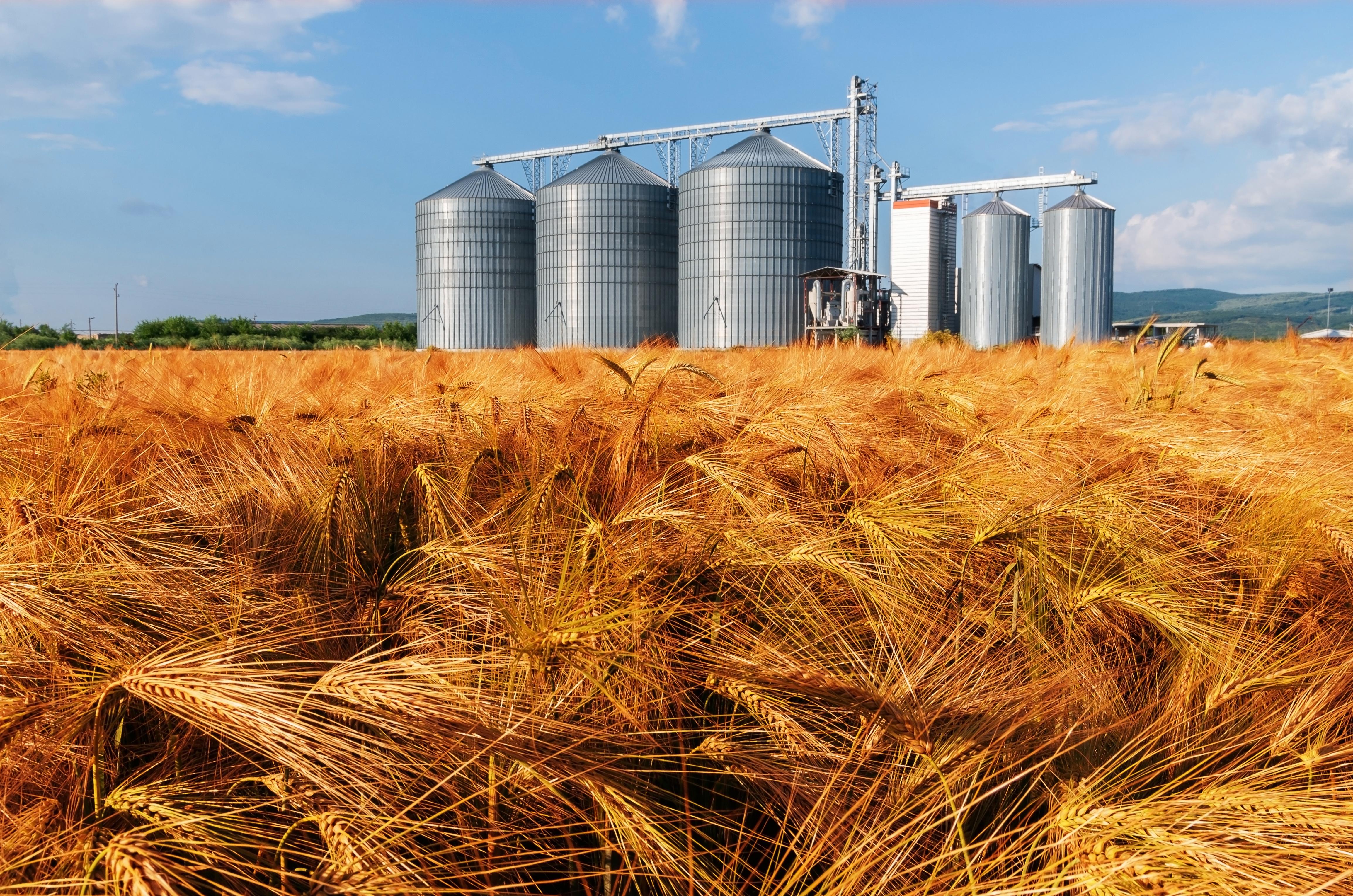 wheat silo
