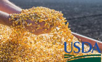 Corn-handling-with-usda-logo_e