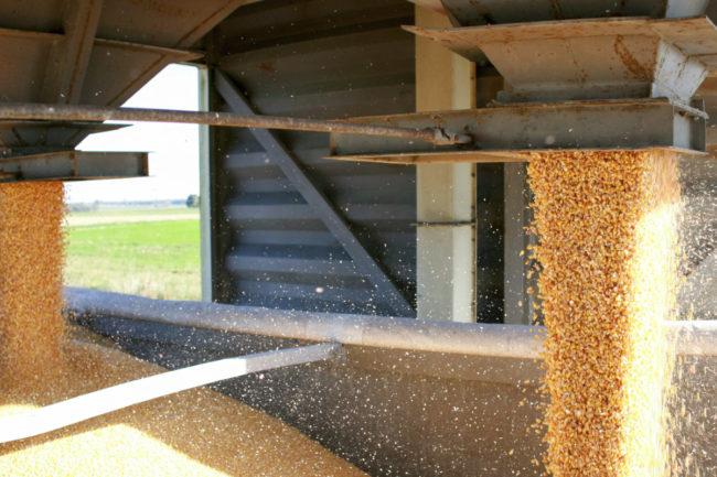 grain handling and storage