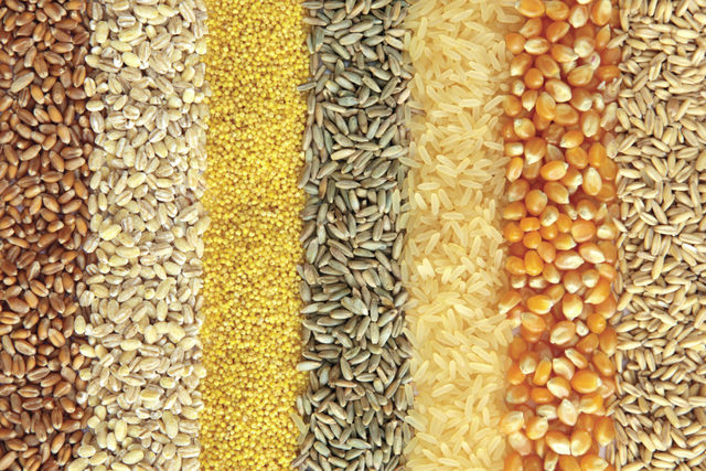 Wholegrains_shutterstock_nov-2014_e