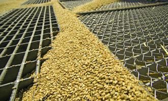 Grain-processing_adobestock_33820863_e