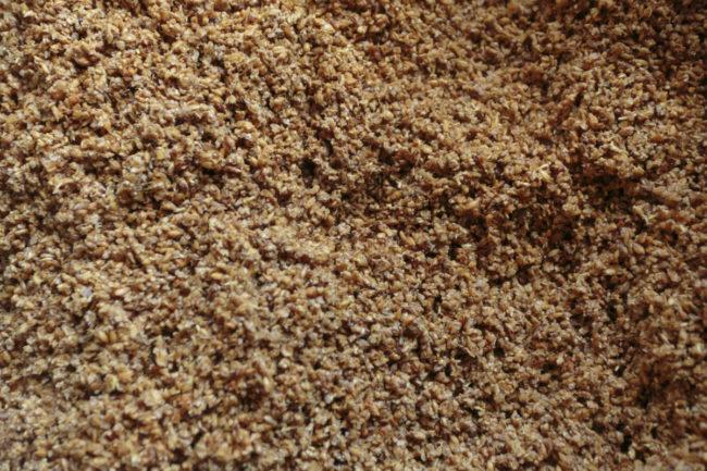 spent grains