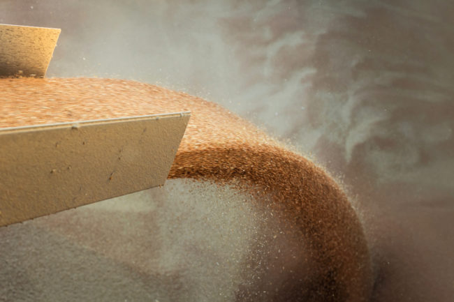 wheat pour