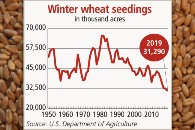 Wheat seeding chart