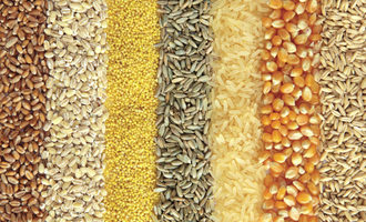 Wholegrains shutterstock nov 2014 e