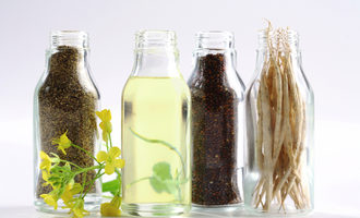 Canola-council-of-canada_canola-seed-oil-meal_photo-cred-ccc_e
