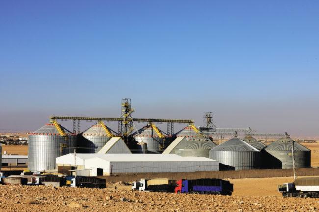 Al-Hasad maize mill