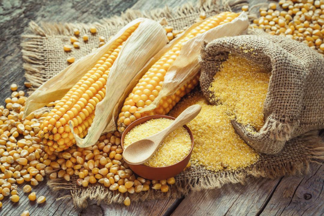 corn four