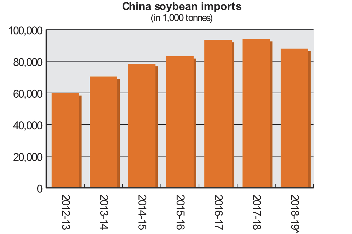 China soybean chart
