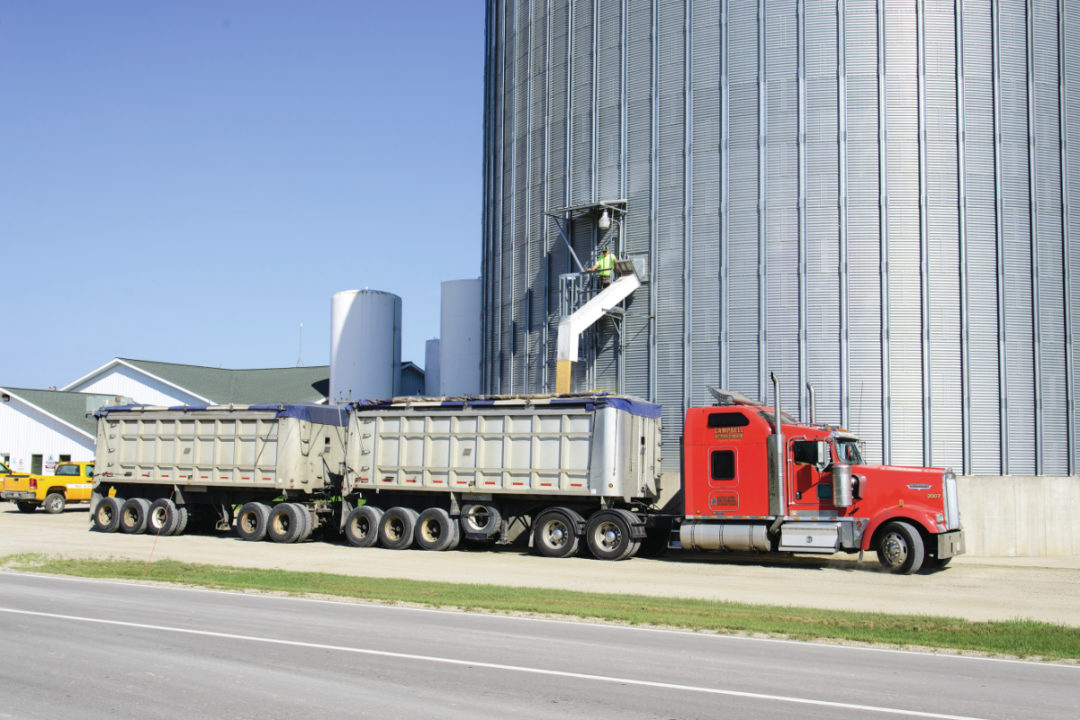 grain operations