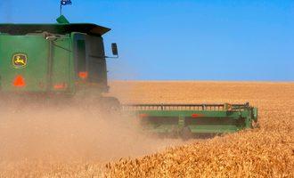 Wheat-field_e