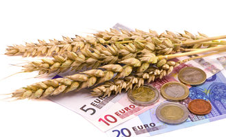 Wheat-euros_adobestock_43943689_e