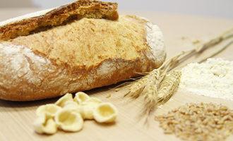 Tritordeum-products_photo-courtesy-of-sustainable-food-summit_e
