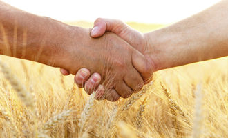 Wheat_handshake_adobestock_114444206_e