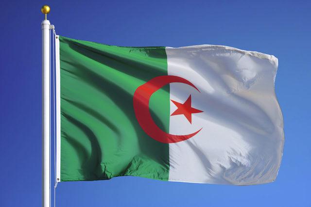 Algeria-flag_adobestock_119560985_e