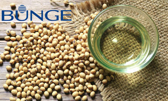 Bunge-logo-with-soybeans_e