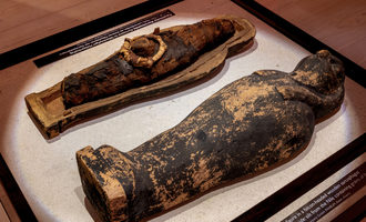 Muhlenchemie flourworld museum corn mummy in a falcon headed wooden sarcophagus photo cred flourworld museum e