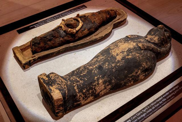 Muhlenchemie_flourworld-museum-corn-mummy-in-a-falcon-headed-wooden-sarcophagus_photo-cred-flourworld-museum_e