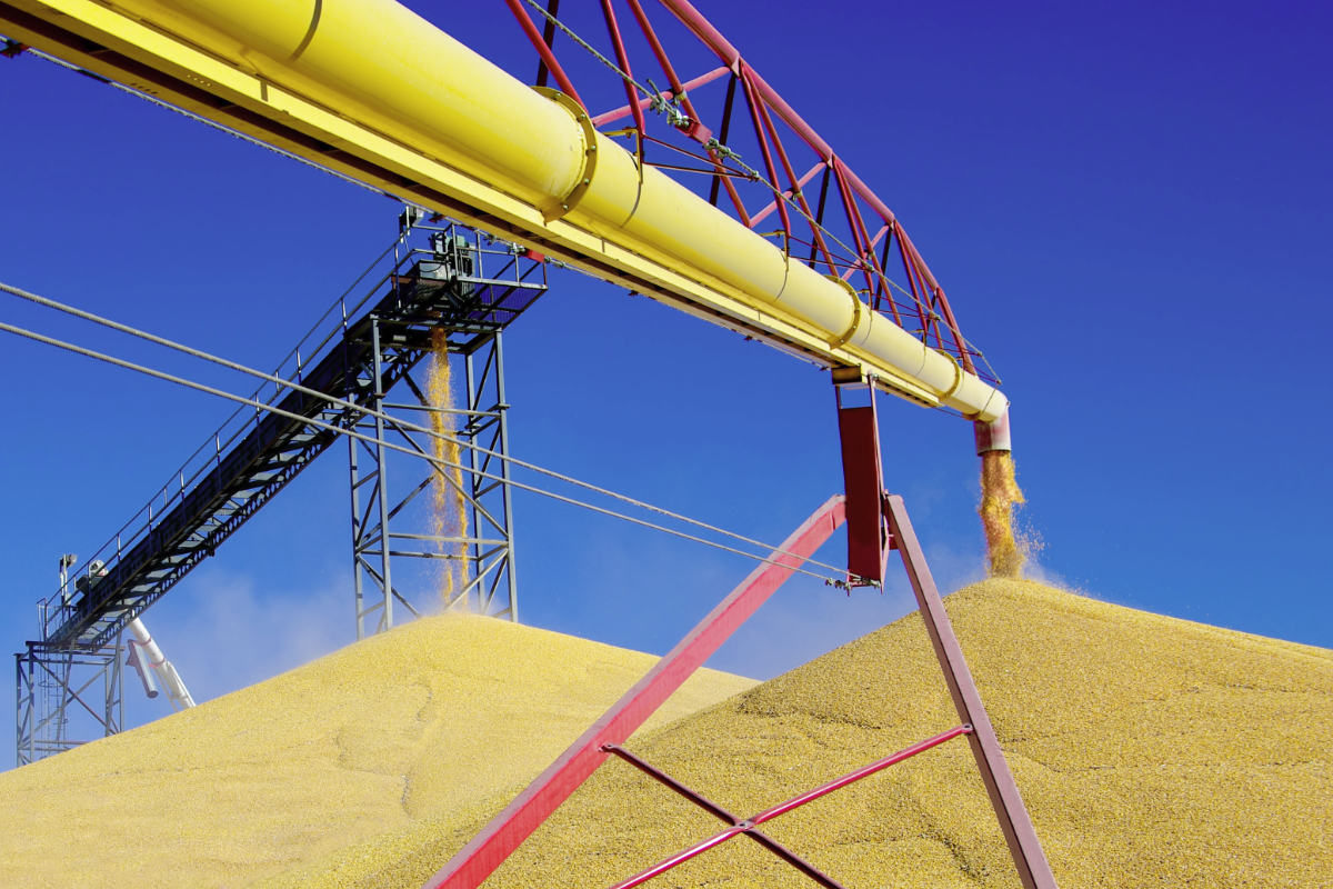 outdoor grain pile
