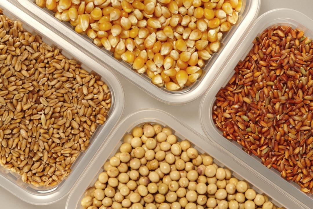 soybean corn rice