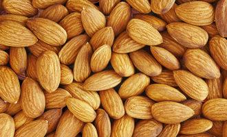 Almond adobestock 263888294 e