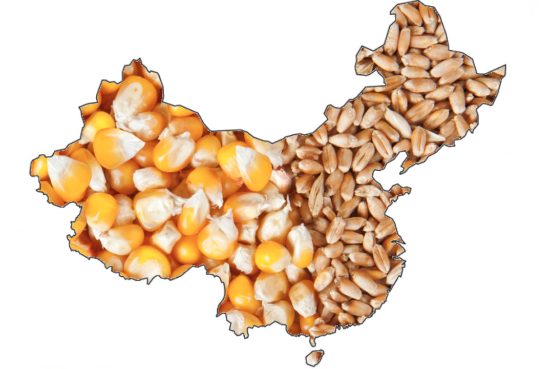 China grain map