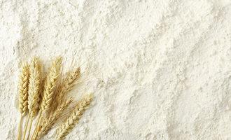 Flour adobestock 78710437 e