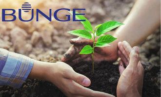 Bunge logo on sustainablity image e