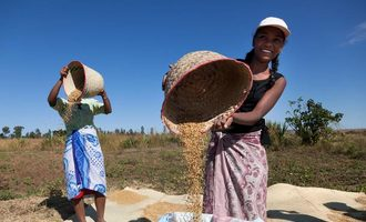 Fao_a-strong-rice-harvest-is-expected-in-madagascar_photo-cred-fao