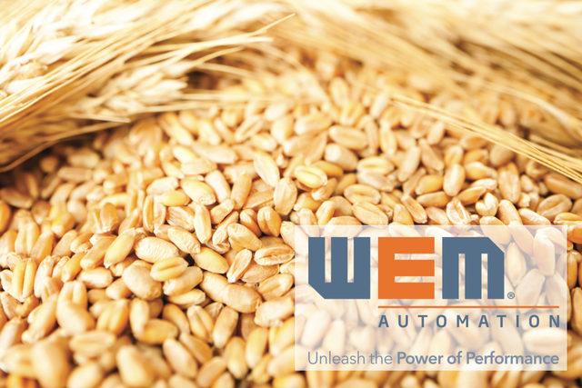 Wem-austomation_logo_e