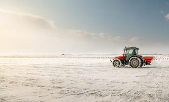 Winter-wheat_photo-cred-adobe-stock_e