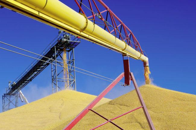 grain pile