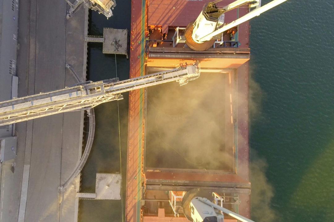 shipping imports