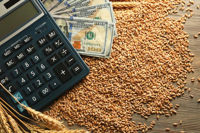 wheat money