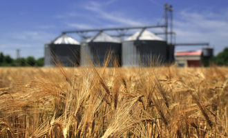 Wheat field with silos adobestock 54246480 e
