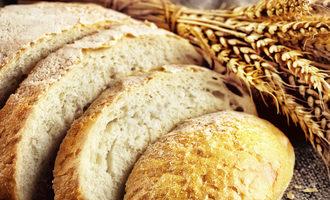 Bread-and-wheat_adobestock_88102441_e