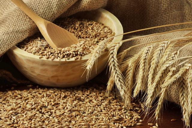 Wheat_adobestock_45878635_e